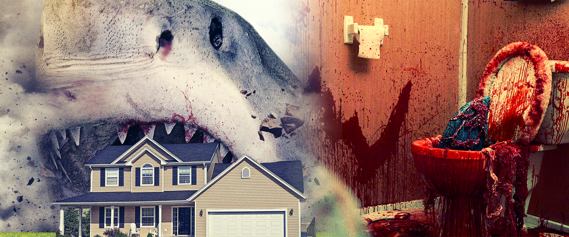 Unwanted Guest? - 'House Shark' REVIEW