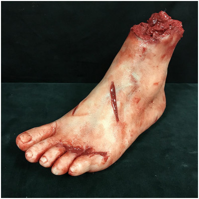 Severed Silicone Female Foot