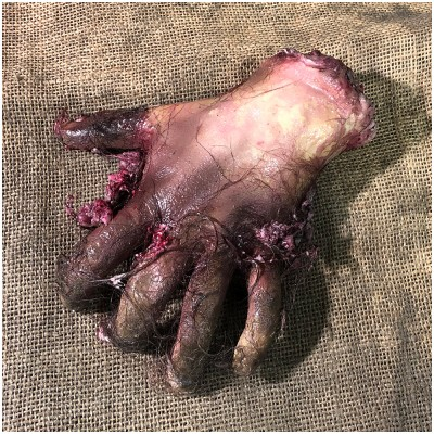 Severed Hand with Gory Hair