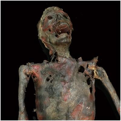 Mr Crispy Corpse