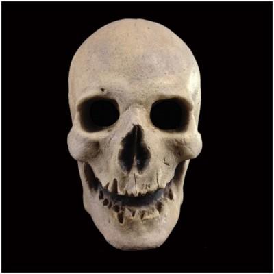Antique Skull Mask