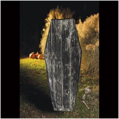 Shakin' Quakin' Animated Coffin