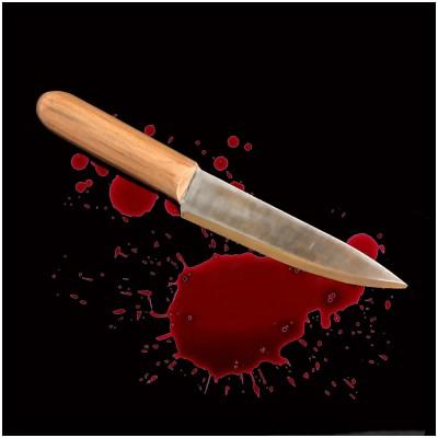 Professional Bleeding Knife Prop
