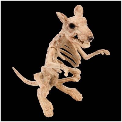 Rat Skeleton Decoration