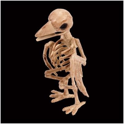 Skeleton Crow