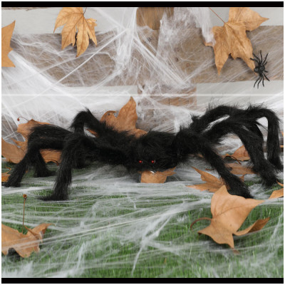 Spider 70cm